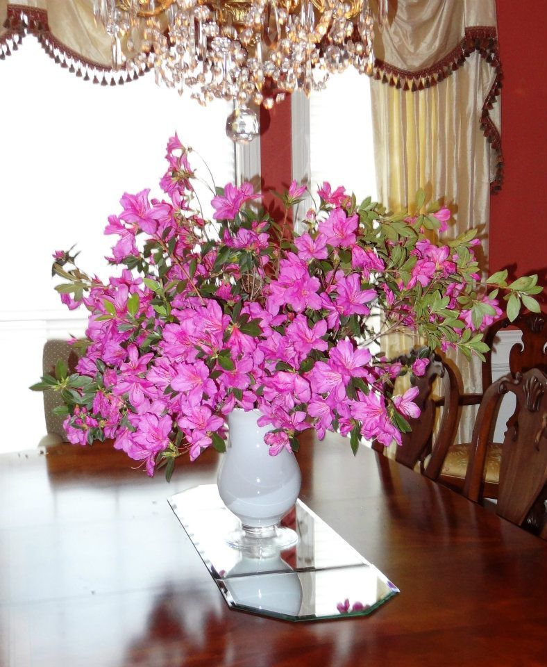 DIY azalea arrangement by Gray Estates. We used fresh azaleas from our yard to create this lovely arrangement. Visit us at www.GrayEstates.com