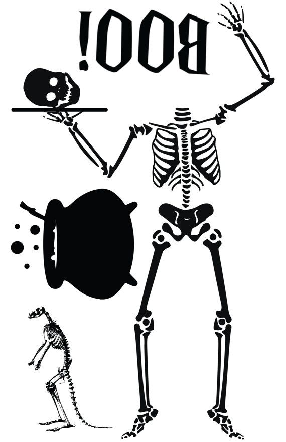 hilarious skeleton must have halloween window cling silhouette skeleton with by nipomoimprints - Halloween Window Clings