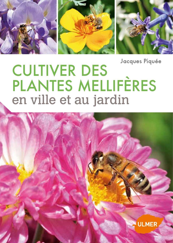 Extrait Cultiver des plantes mellifères en ville et au