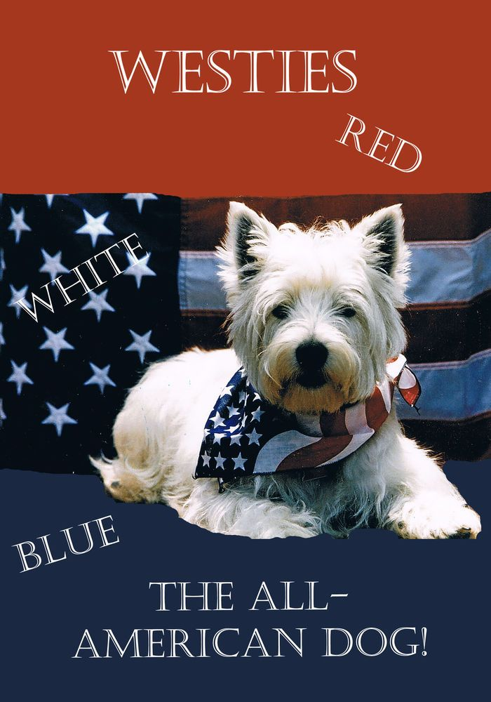 "*4th of JULY Westie ""Red, White & Blue"" Garden Flag"