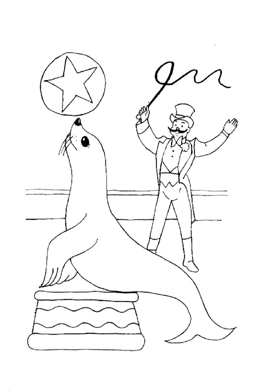 kleuterdigitaal kp zeeleeuwen trainer 01 kleurplaten