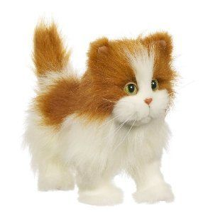 Furreal Friends Lulu Walkin Kitty White Orange You Can Find
