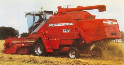 81MF665