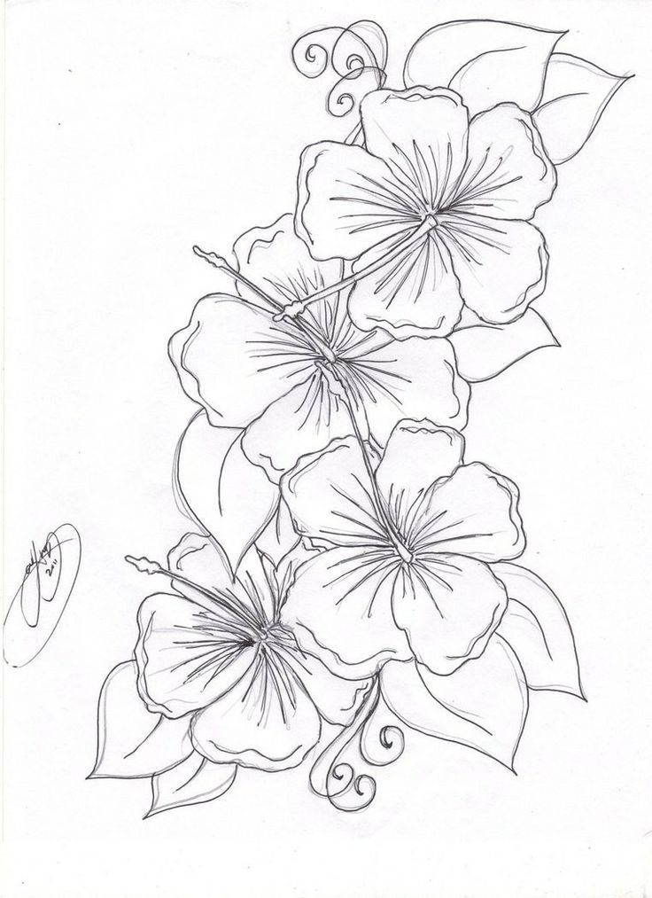 Pin Von Uschikatze Auf Tattoo Love Blumenmalvorlagen Blumenranken Tattoo Blumenzeichnung