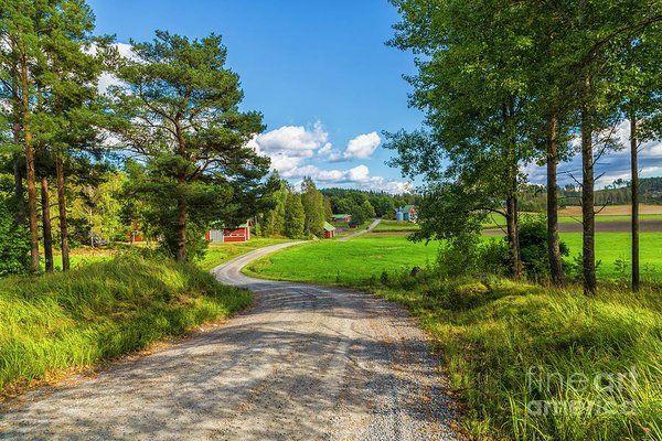 Beautifully inviting landscape by Viekko Suikkanen