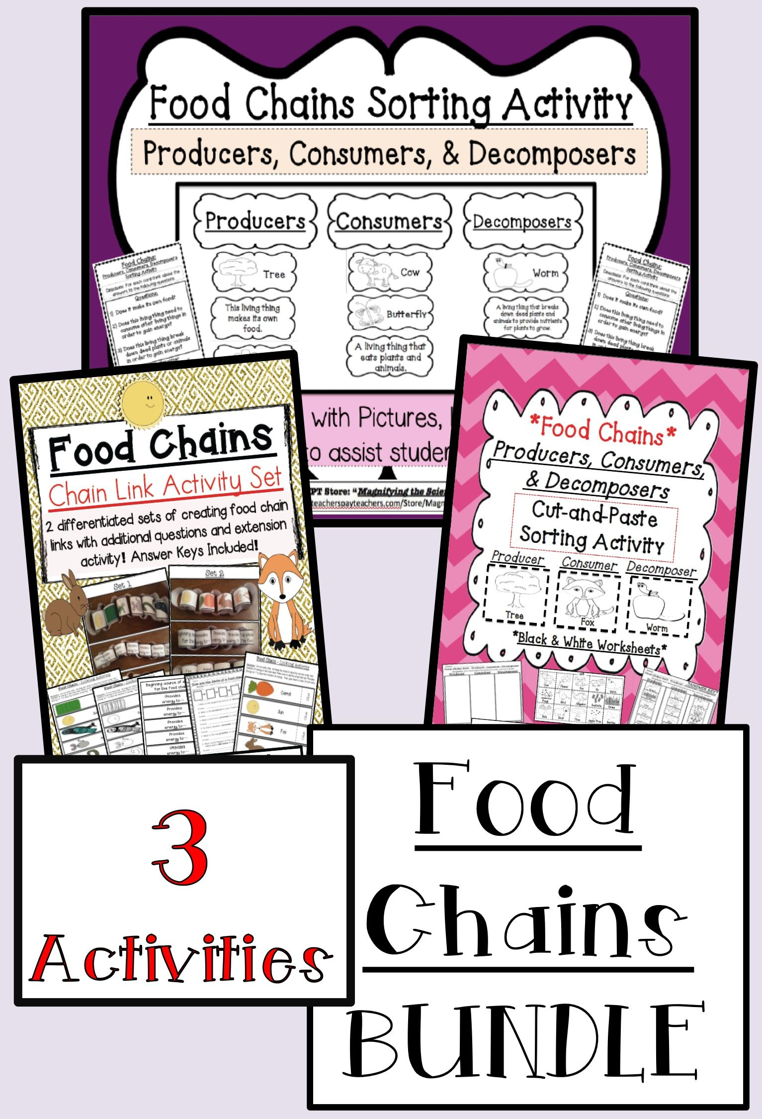 Food Chains Bundle Activity Set Science Lessons Elementary Food Chain Science Classroom