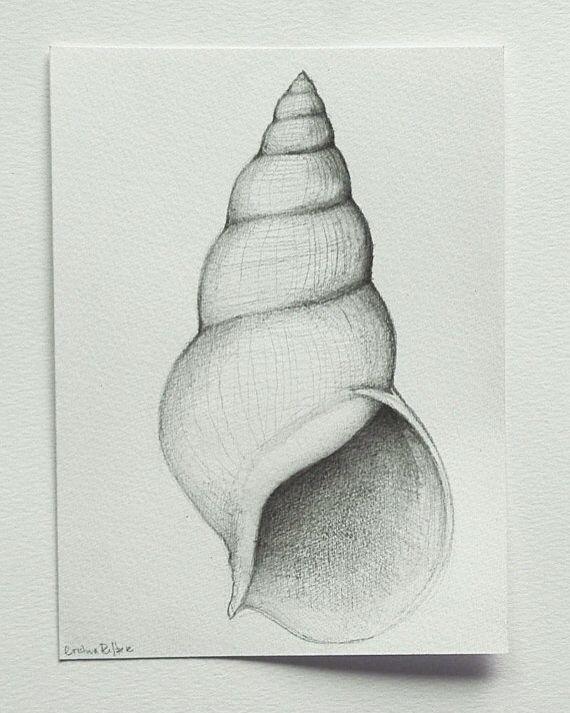 Basic Drawing Pencil Shading - pencildrawing2019