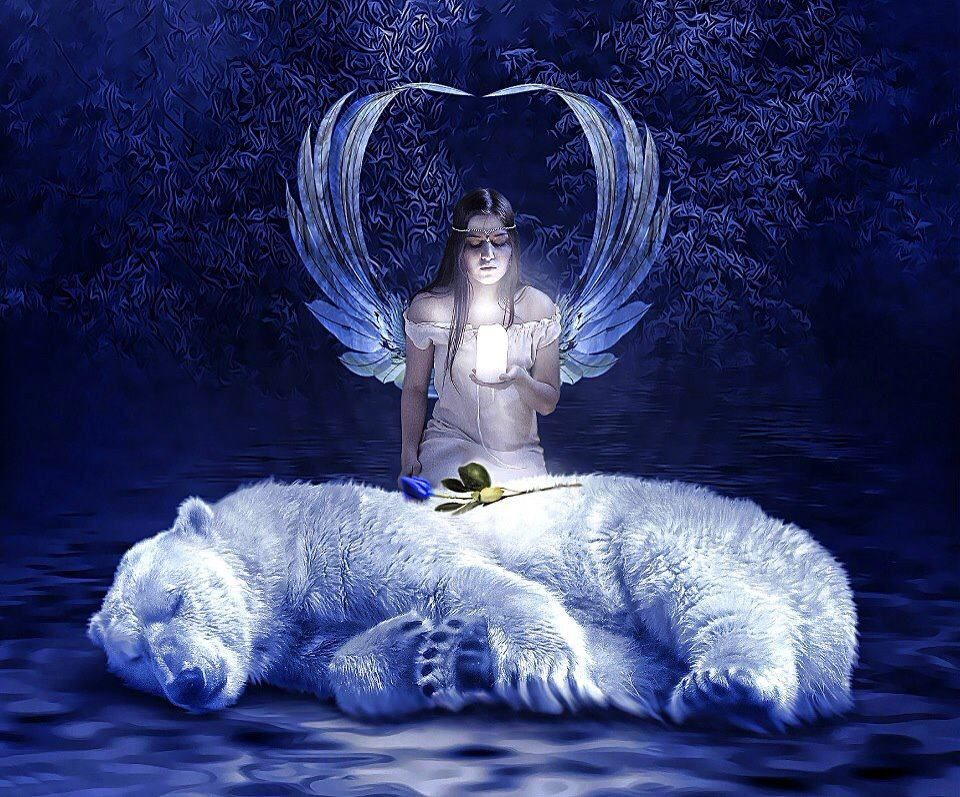 Angel With A Polar Bear Blue Rose Angel And Spiritual Stuff Pinte