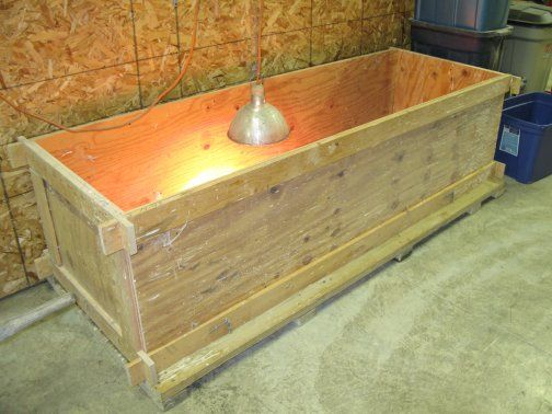 Chicken Brooder Box | ... Brooder. But At Least 48 Hours Prior To
