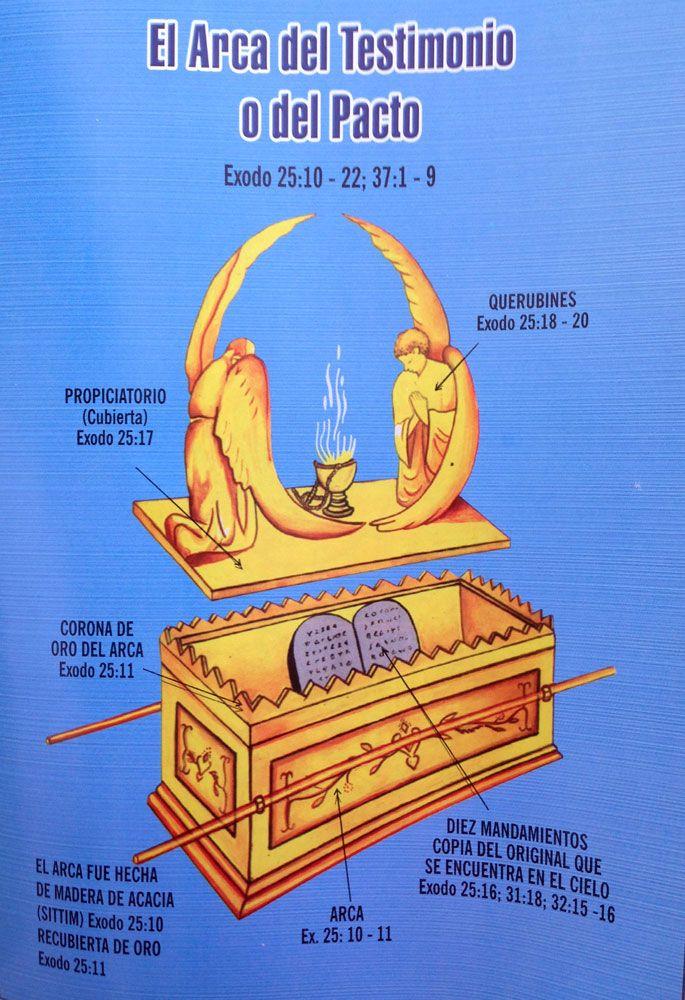 Resultado De Imagen Para El Candelabro Del Tabernaculo Madera De Acacia Querubines Iglesia Adventista