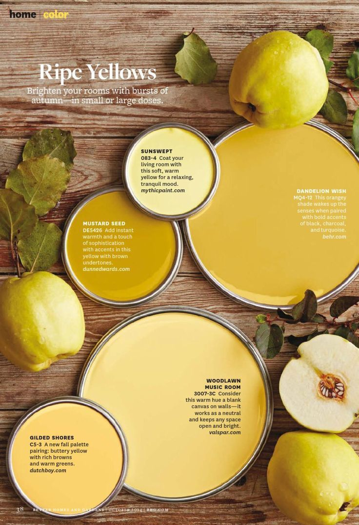 Ripe Yellows Paint Palette Yellow Colorswall