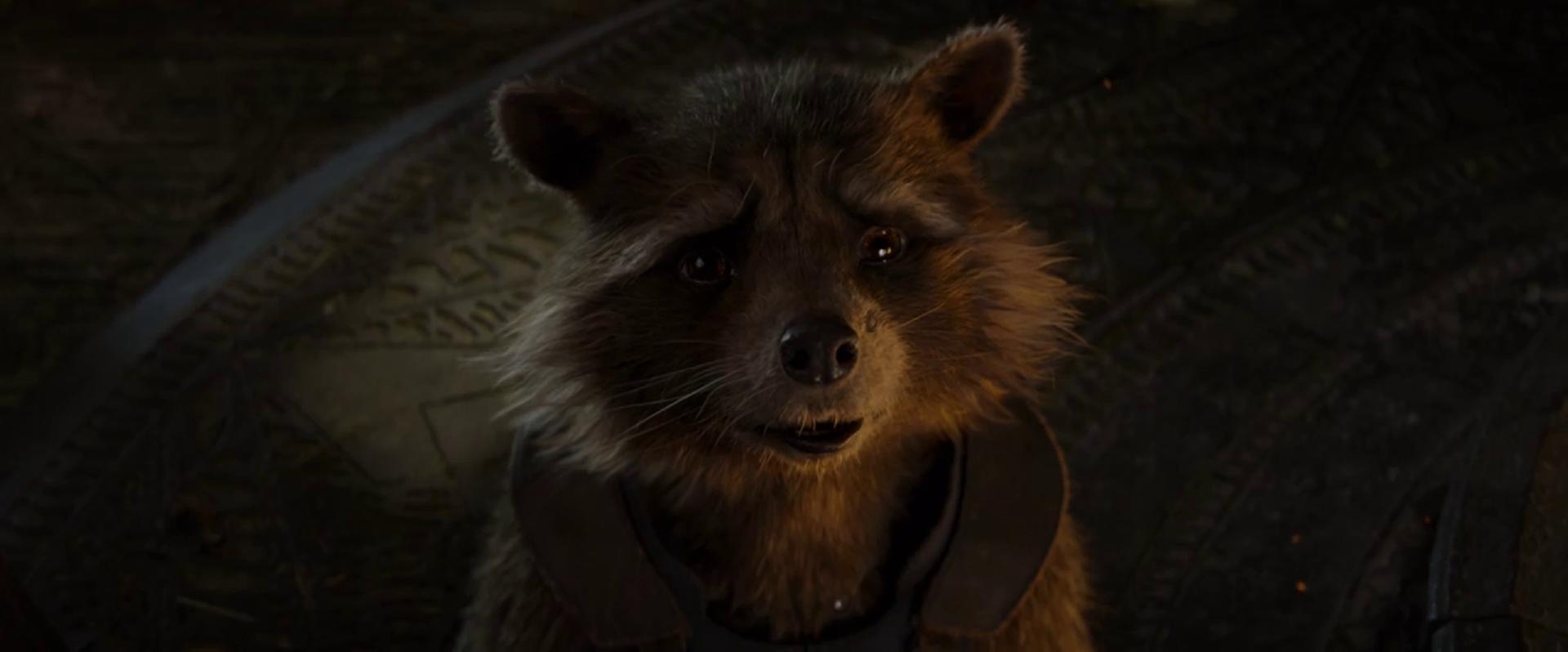 Avengers Endgame Avengers Rocket Raccoon New Avengers