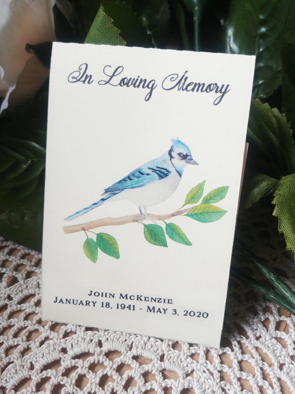 In loving memory blue jay birds feed the birds seed etsy