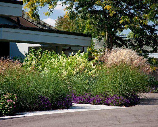 10++ Amenagement jardin avec graminees ideas in 2021