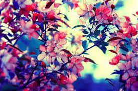 Resultado De Imagen Para Flores Vintage Tumblr Azules Flores