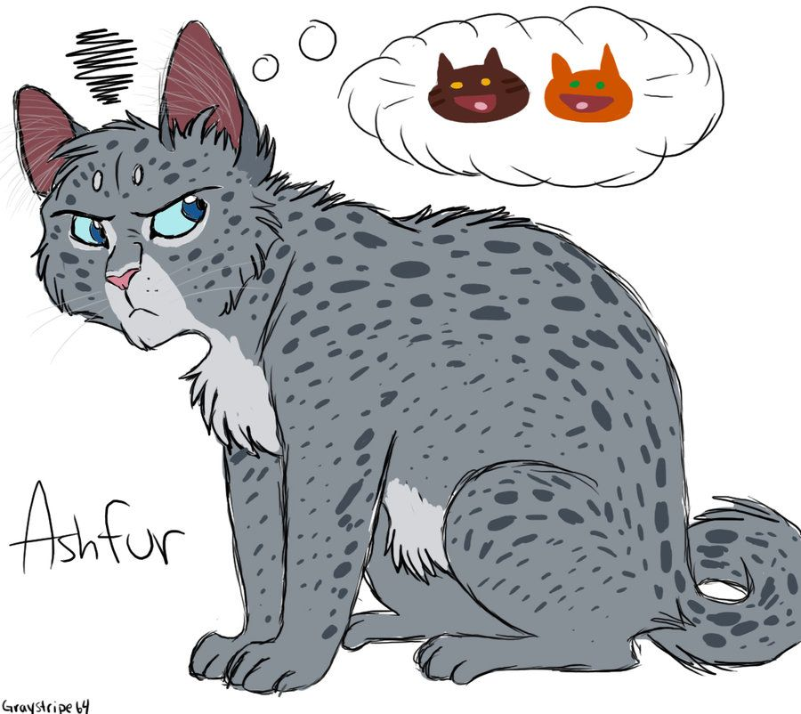 Warriors Don T Cry Pdf Book: Bad Thoughts By Graystripe64 On DeviantART