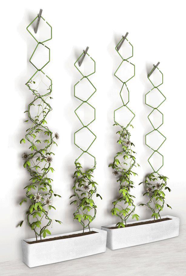 Vertical Gardening Trellis Ideas Part - 24: Frédéric Malphettes Trellis Vertical Garden