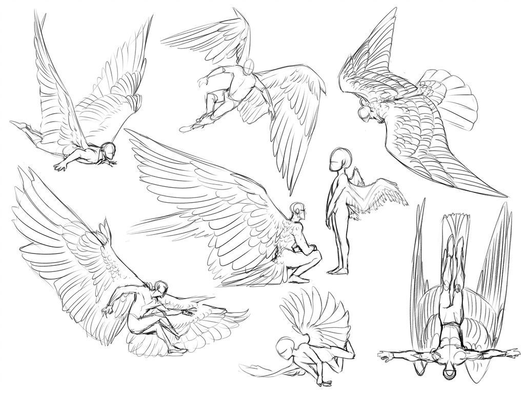 Photo of Angel sketches by Umbrace on DeviantArt
