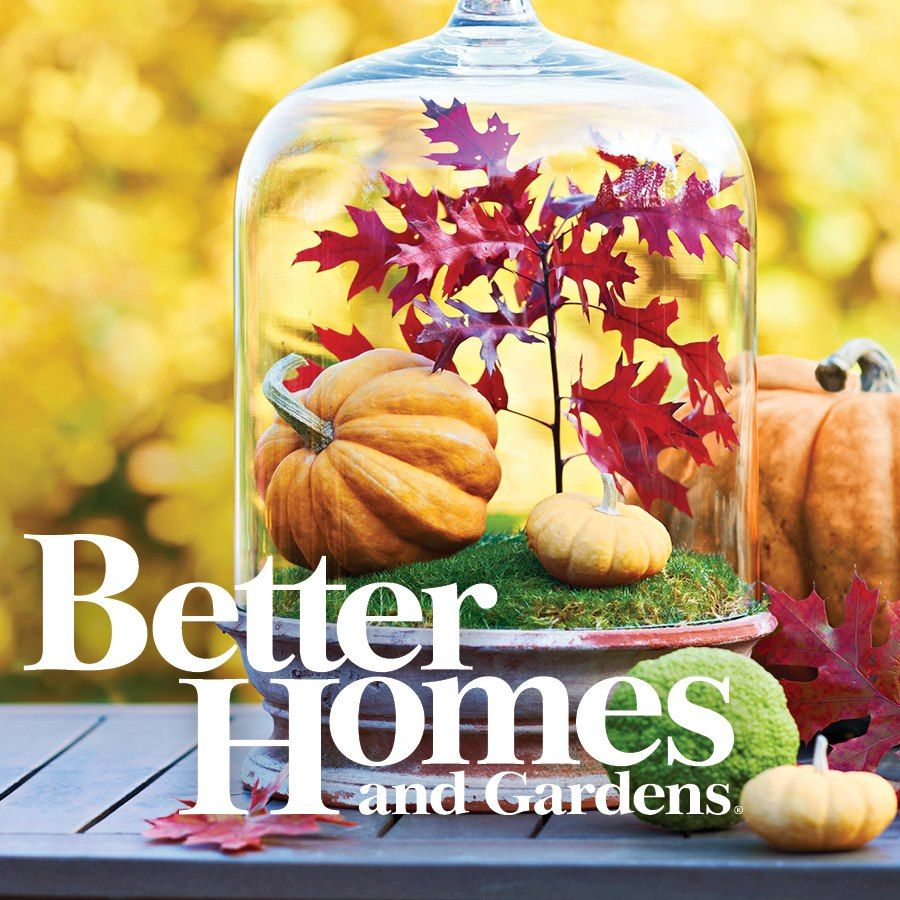Autumn Terrarium And Other Fall Decorating Ideas 2012