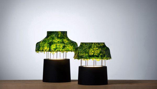 Lamps Made Of Seaweed By Nir Meiri Lamp Cool Lamps Table Lamp