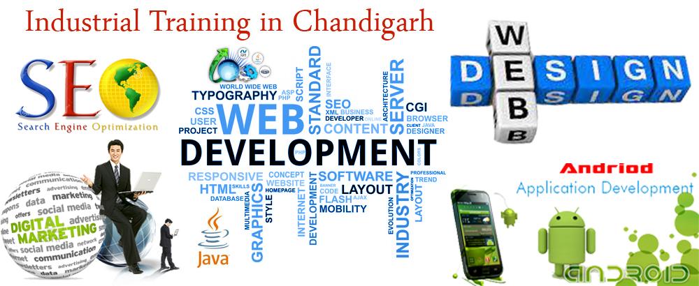 Industrial Training in Chandigarh Web development