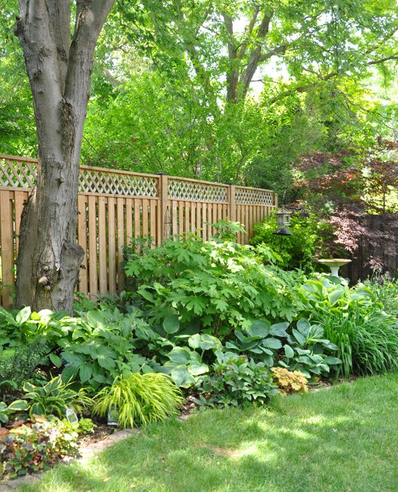 Three Dogs in a Garden: A Shade Garden in Oakville ...