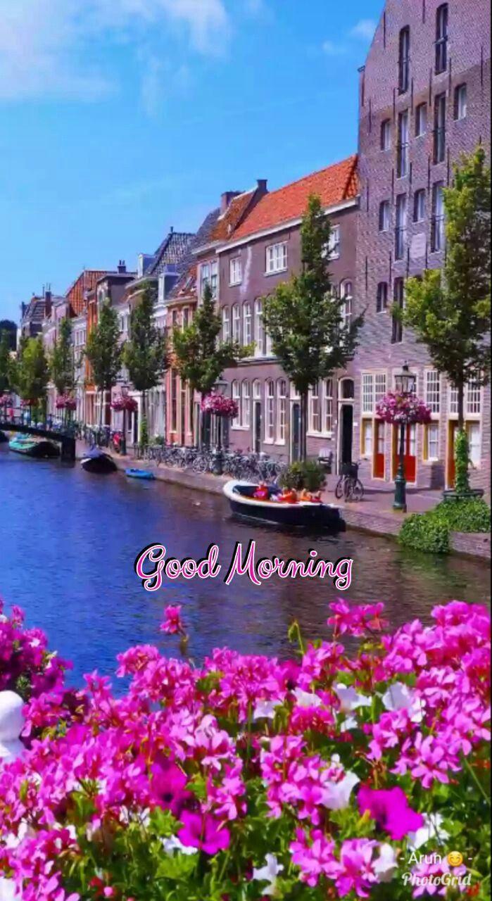 Pin di Rozy Hassan su morning   Luoghi meravigliosi, Paesaggi, Natura