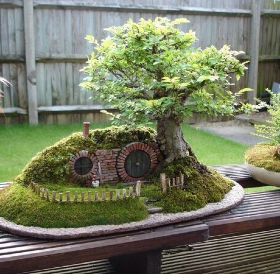 1000 Images About Gardening On Pinterest Gardens Miniature
