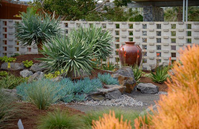 Garden Ideas Brisbane arid garden design - google search | garden ideas | pinterest