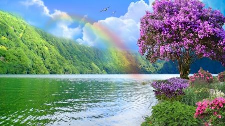 Rainbow Rainbow Nature River Flowers Hd Wallpaper Landscape Rainbow Photography Flowers Nature Rainbow Wallpaper