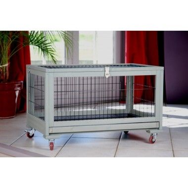 Cage En Bois Sur Roulettes Pour Lapin Pets Pinterest