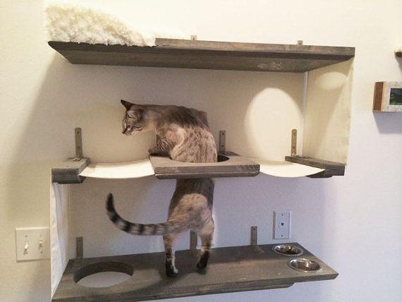 Bunker Cat Niveau 3 Par Catastrophicreations Sur Etsy 170 00