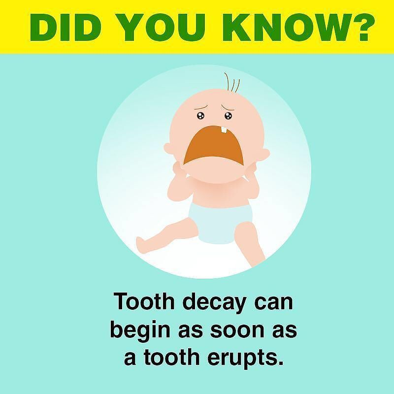 Primary teeth are susceptible to decay as soon as they appear in the ...