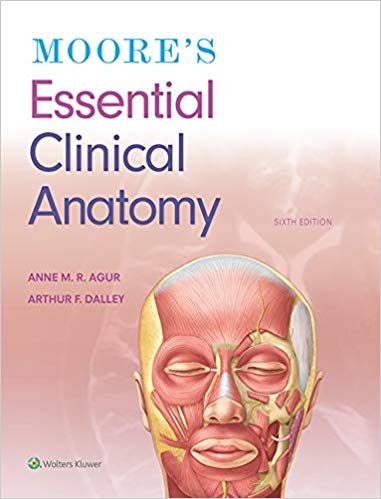 Ebook Pdf Moore S Essential Clinical Anatomy 6th Edition Anatomy Diagnostic Imaging Radiology Imaging