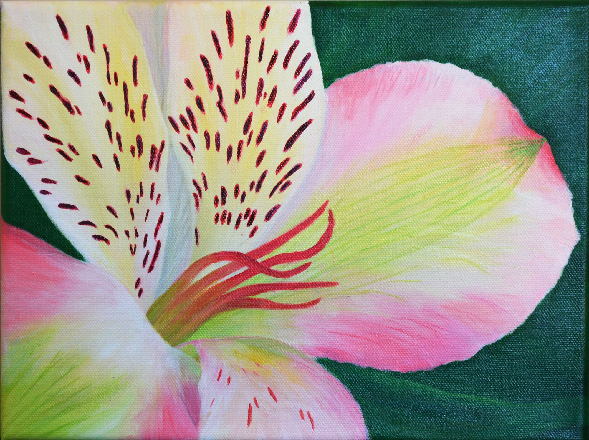 Peruvian Lily Alstroemeria Flower Original Wall Art For Sale Acrylic Painting From The Author Https Www Etsy With Images Flower Painting Original Wall Art Lily Flower