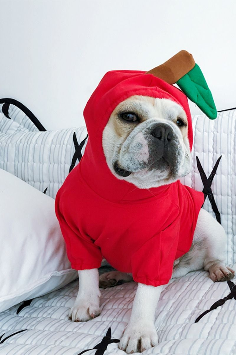 Red Apple Halloween Dog Costume For French Bulldogs Dog