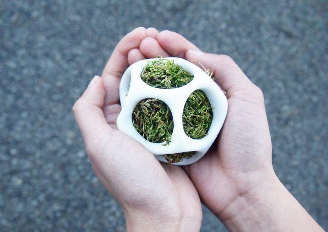 Cella- innovative Pflanzgefäße aus Kunststoff von der Natur