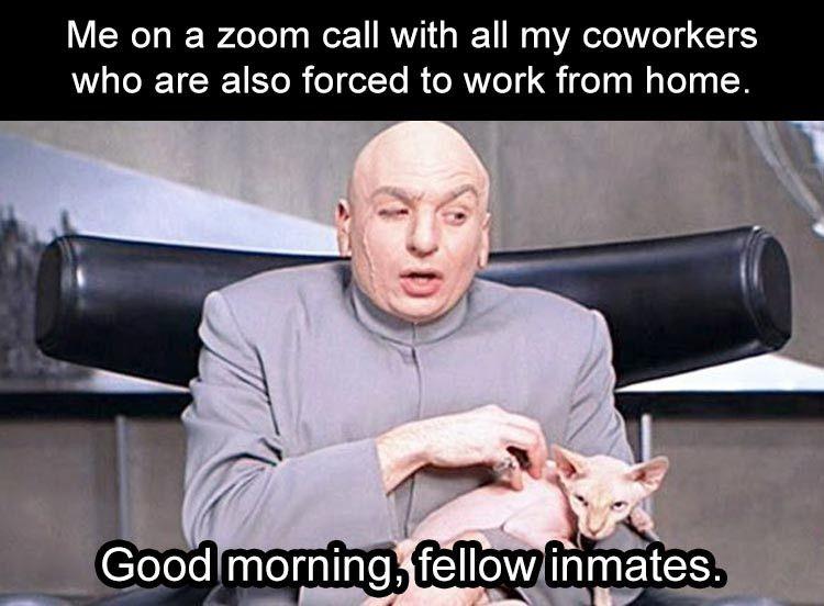 Amusing Good Morning Funny Meme Good Morning Funny Morning Humor Grumpy Cat Humor