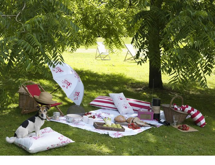 de picnic!