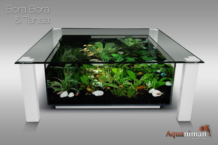 Aquarium colonne dangle design bermudes | aquariums signés ...