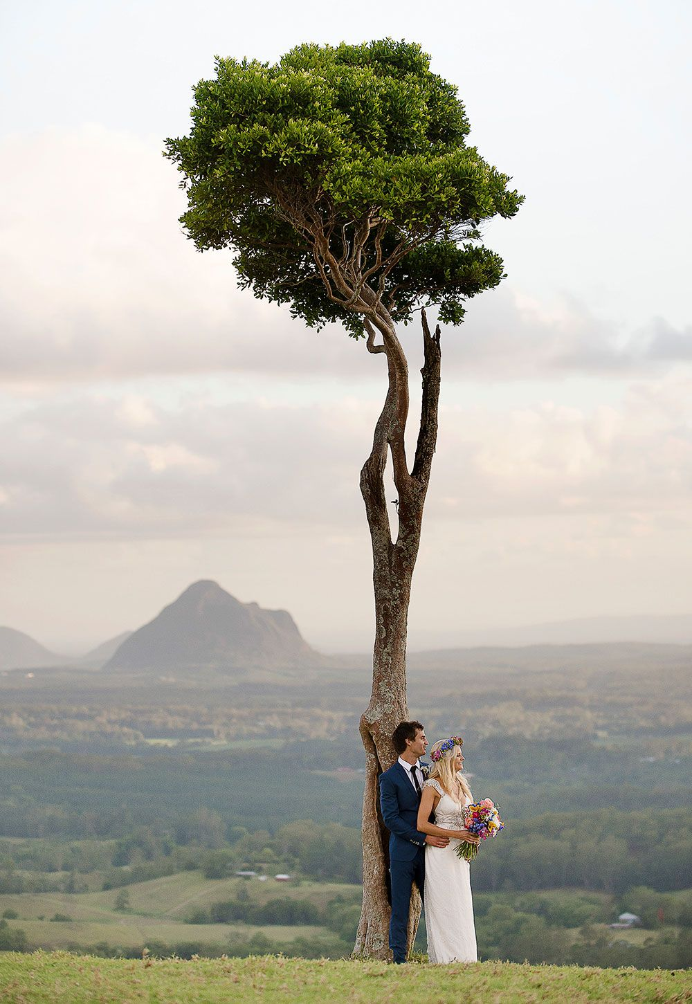 One Tree Hill Is The Most Por Spot For A Sunshine Coast Hinterland Wedding