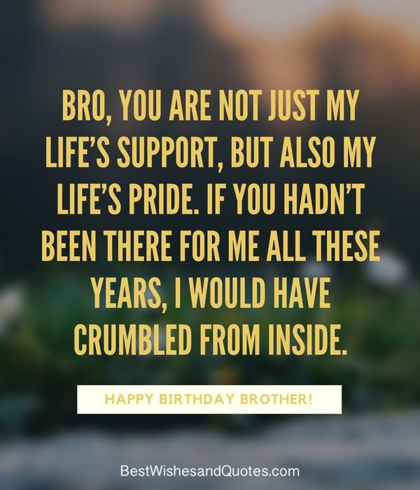 Happy Birthday Brother Quotes And Sayings Happy Birthday Brother