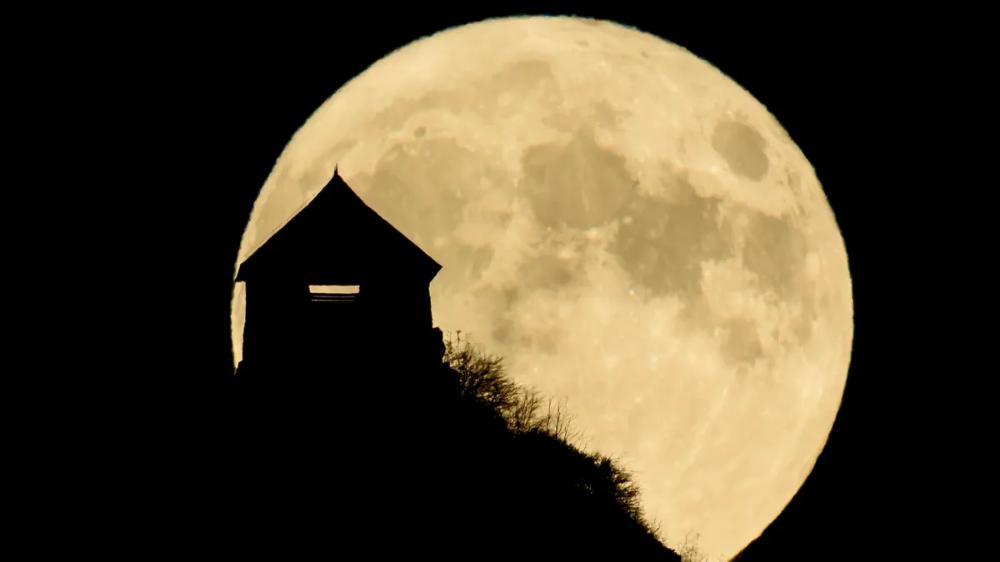 Photos Rare Halloween Blue Moon In 2020 Blue Moon Photo Halloween
