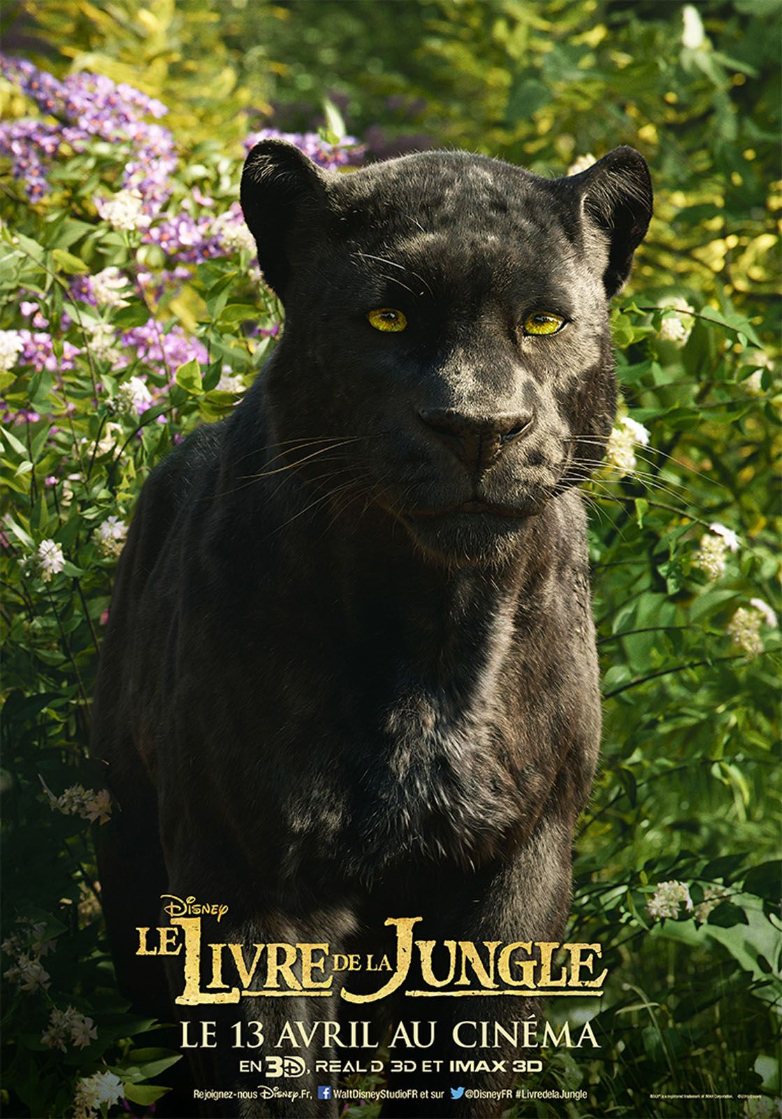 Le Livre De La Jungle Bagheera : livre, jungle, bagheera, Affiche, Livre, Jungle, Movie,, Bagheera,, Disney