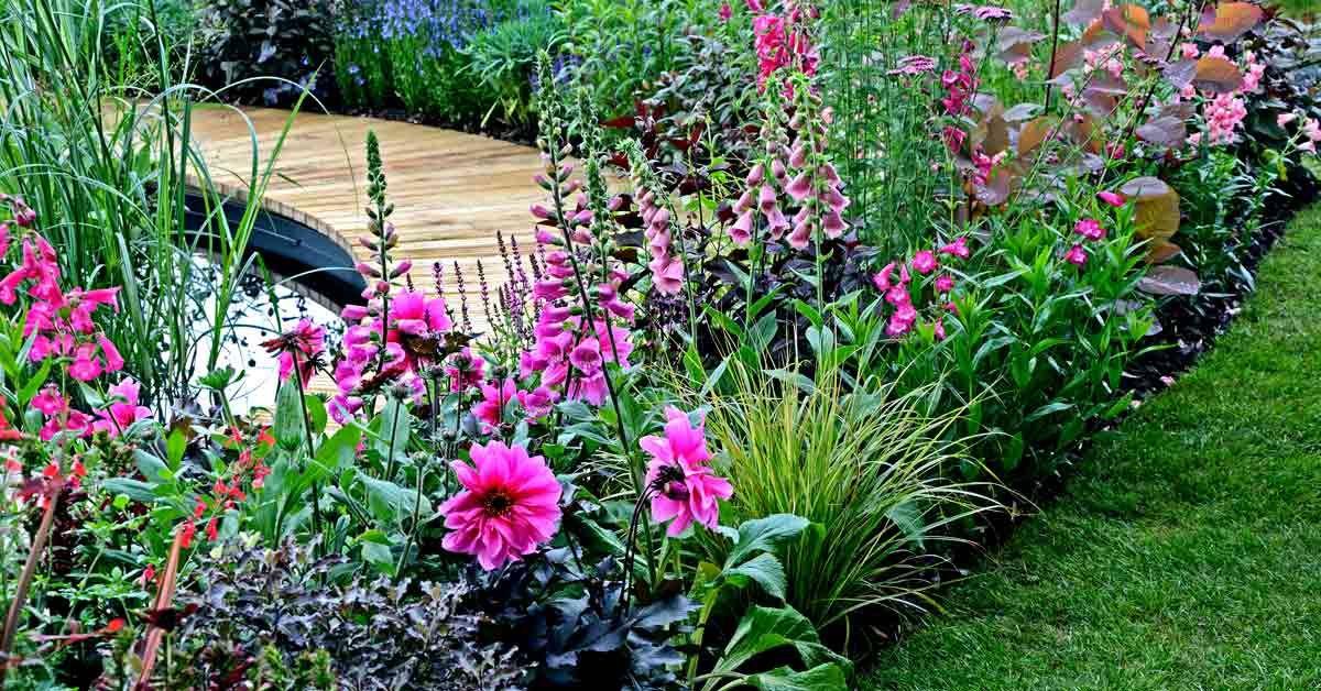 Welp Beplantingsplan - Border planten, Border tuin en Tuin PJ-04