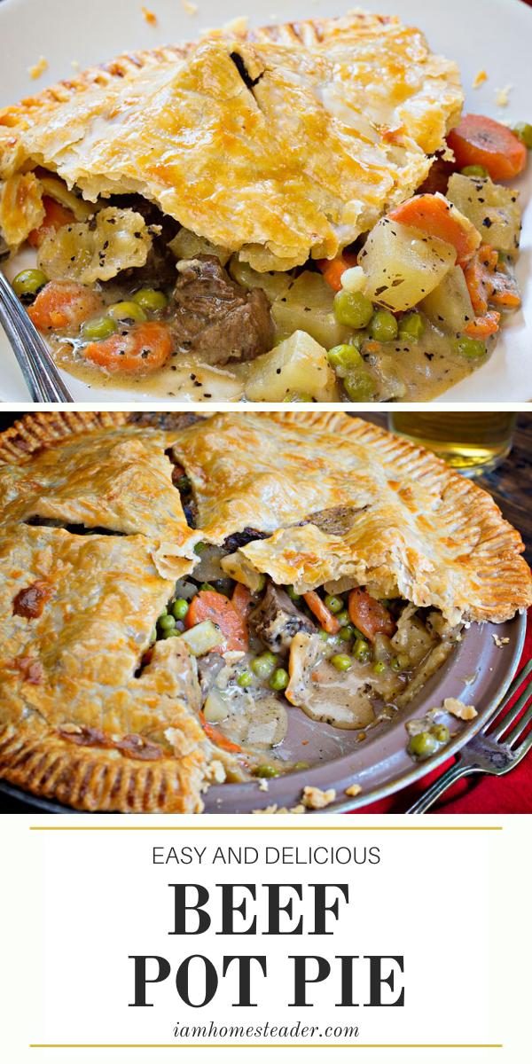 Beef Pot Pie Beef Pot Pies Pot Pie Beef Pot Pie Recipe