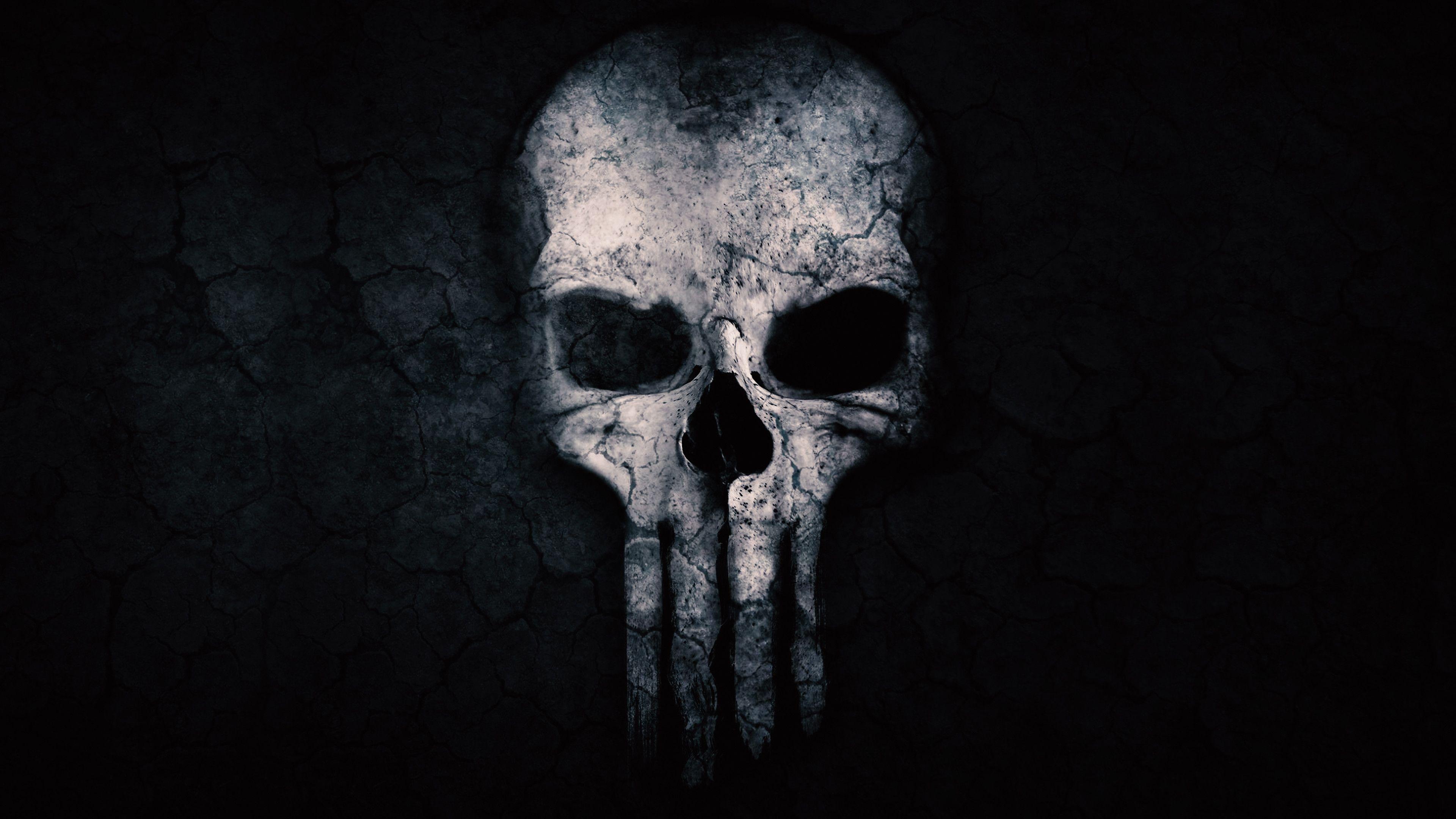 Cool Wallpaper Chromebook Mywallpapers Site Skull Wallpaper Google Themes Skull