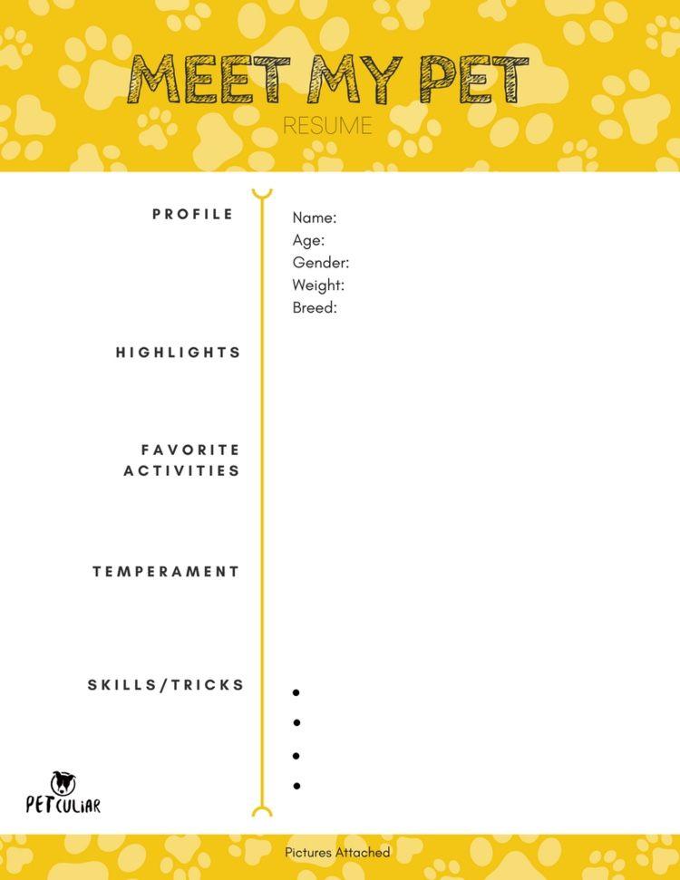 free pet resume download pets resume profile resume. Black Bedroom Furniture Sets. Home Design Ideas