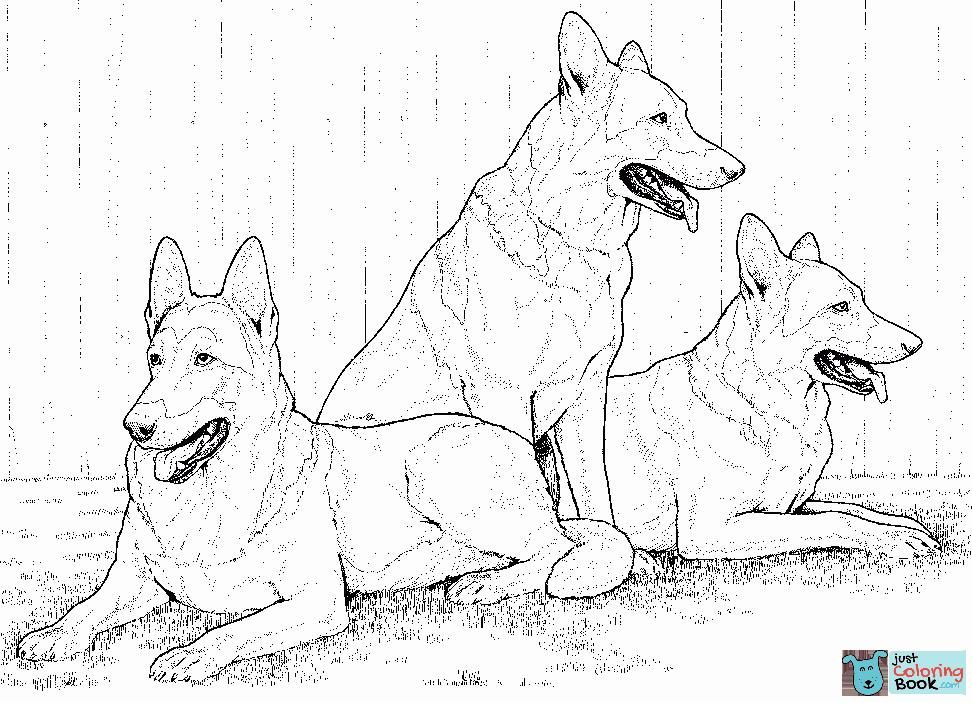 German Shepherd Dogs Coloring Page Free Printable Coloring Pages Regarding German Shepherd Coloring Pages