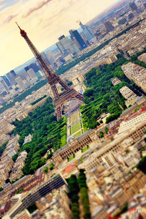Pefect view of Paris and its Eiffel Tower!